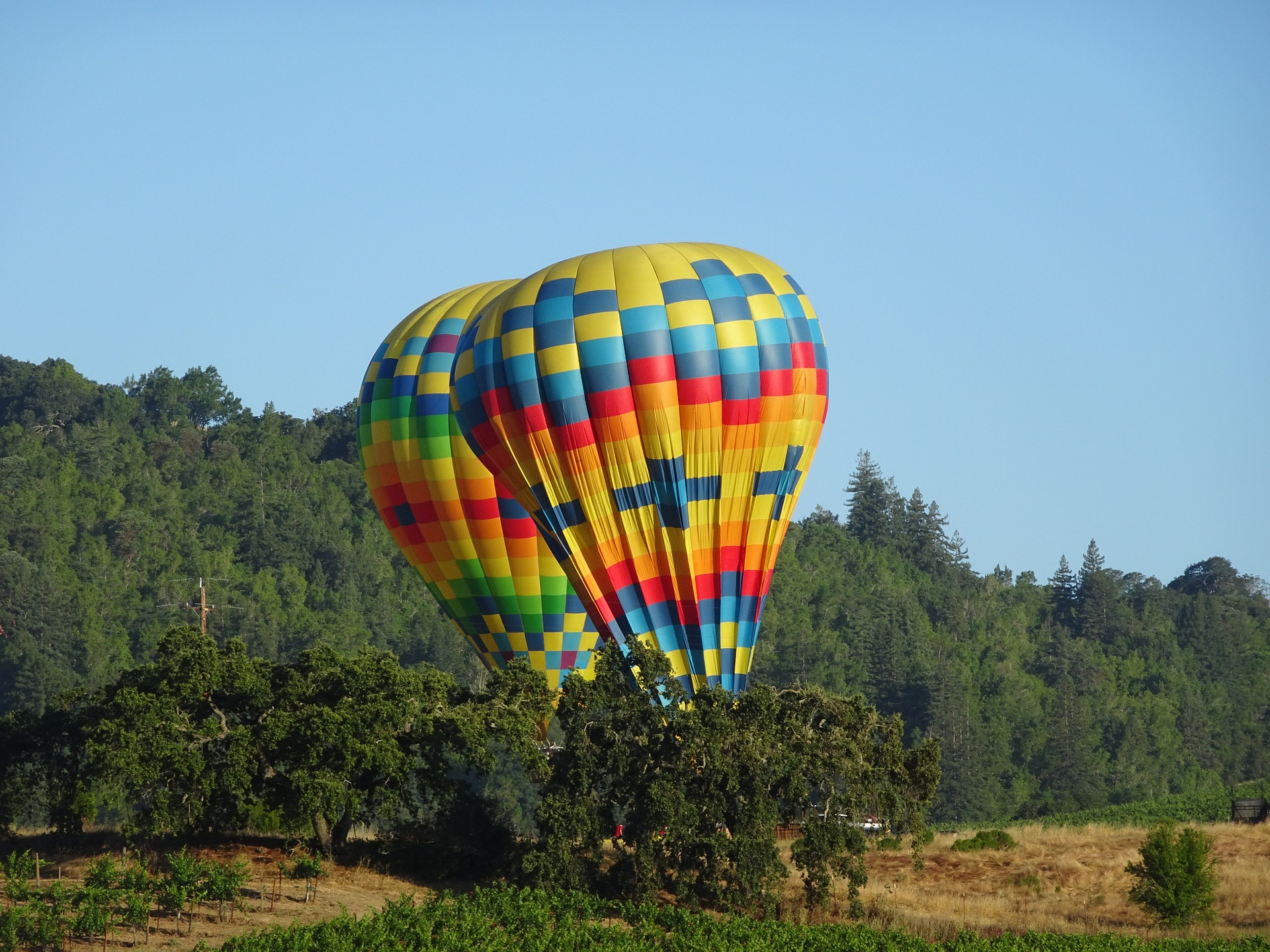 Hot air balloons in Napa, California