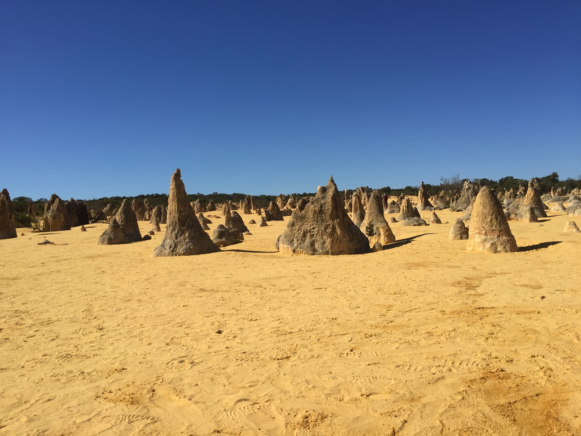 The Pinnacles are limestone rock formations within Nambung National Park, Western Australia