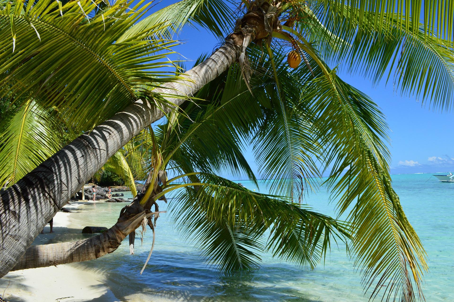 Beach in Bora Bora