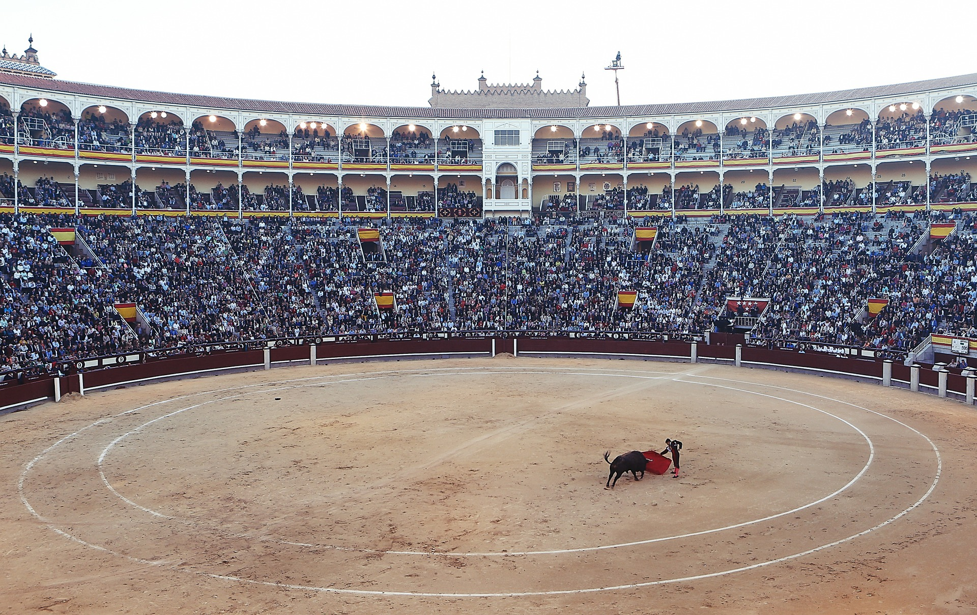 Bullfight in Madrid, Spain