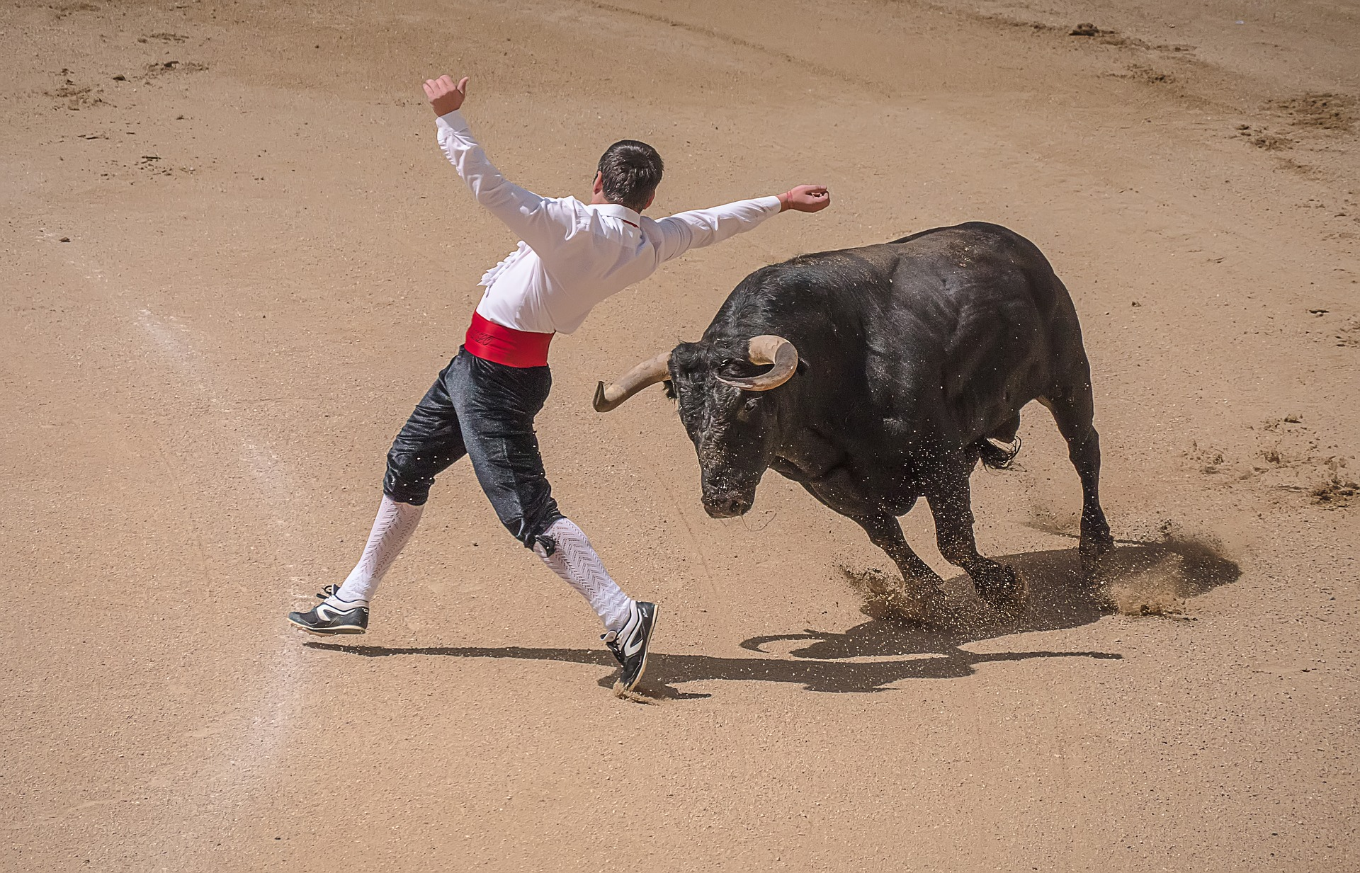 Bullfighting in Madrid, Spain