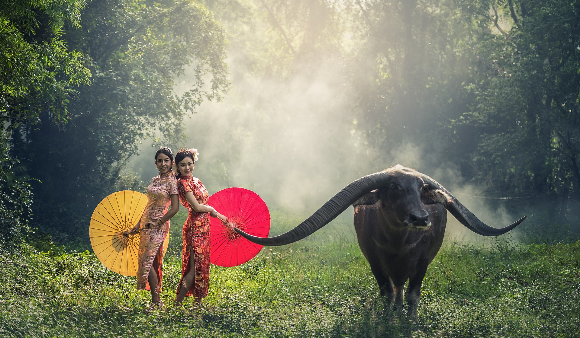 Cambodian women with buffalo in Cambodia