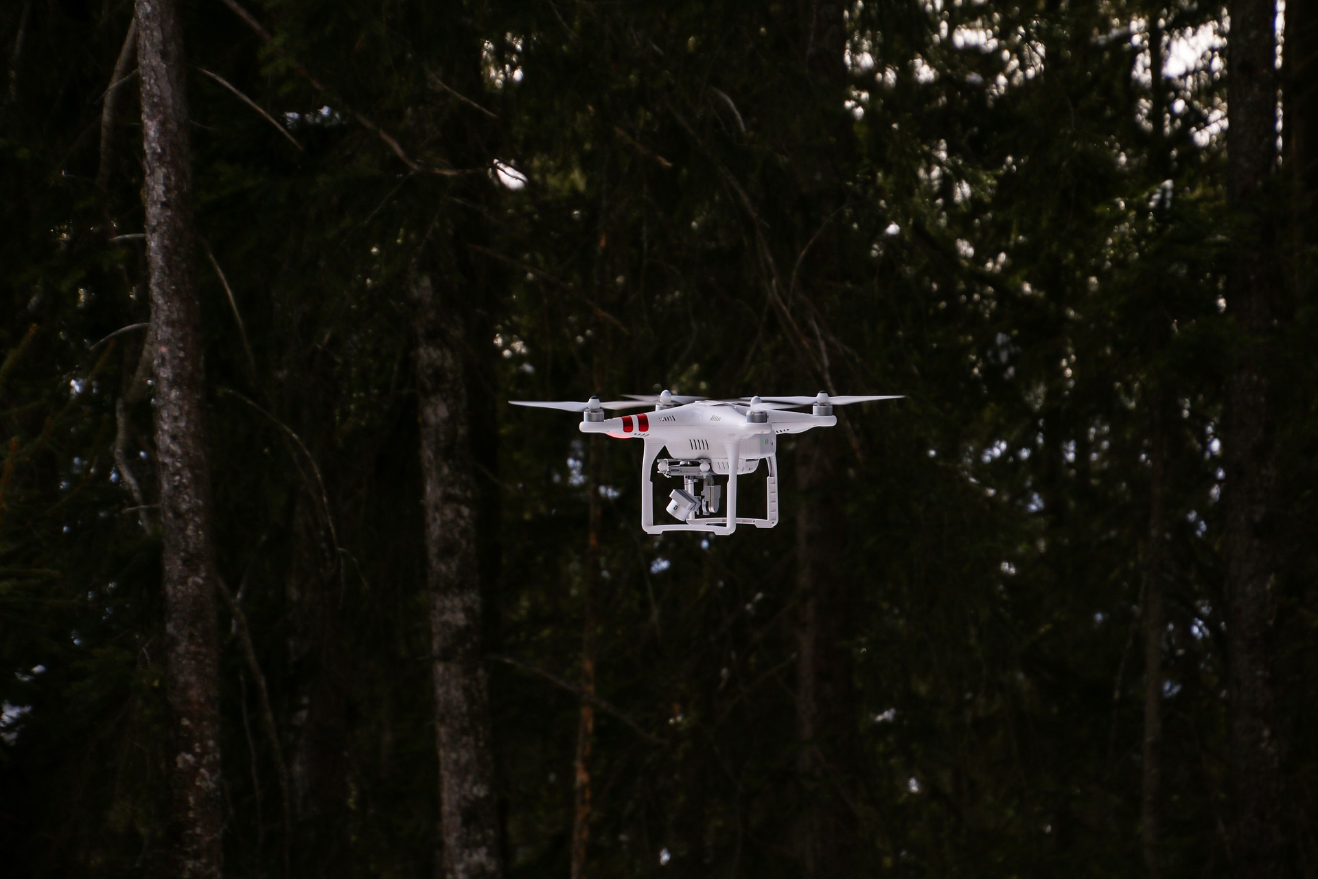 Drone flying close to forrest