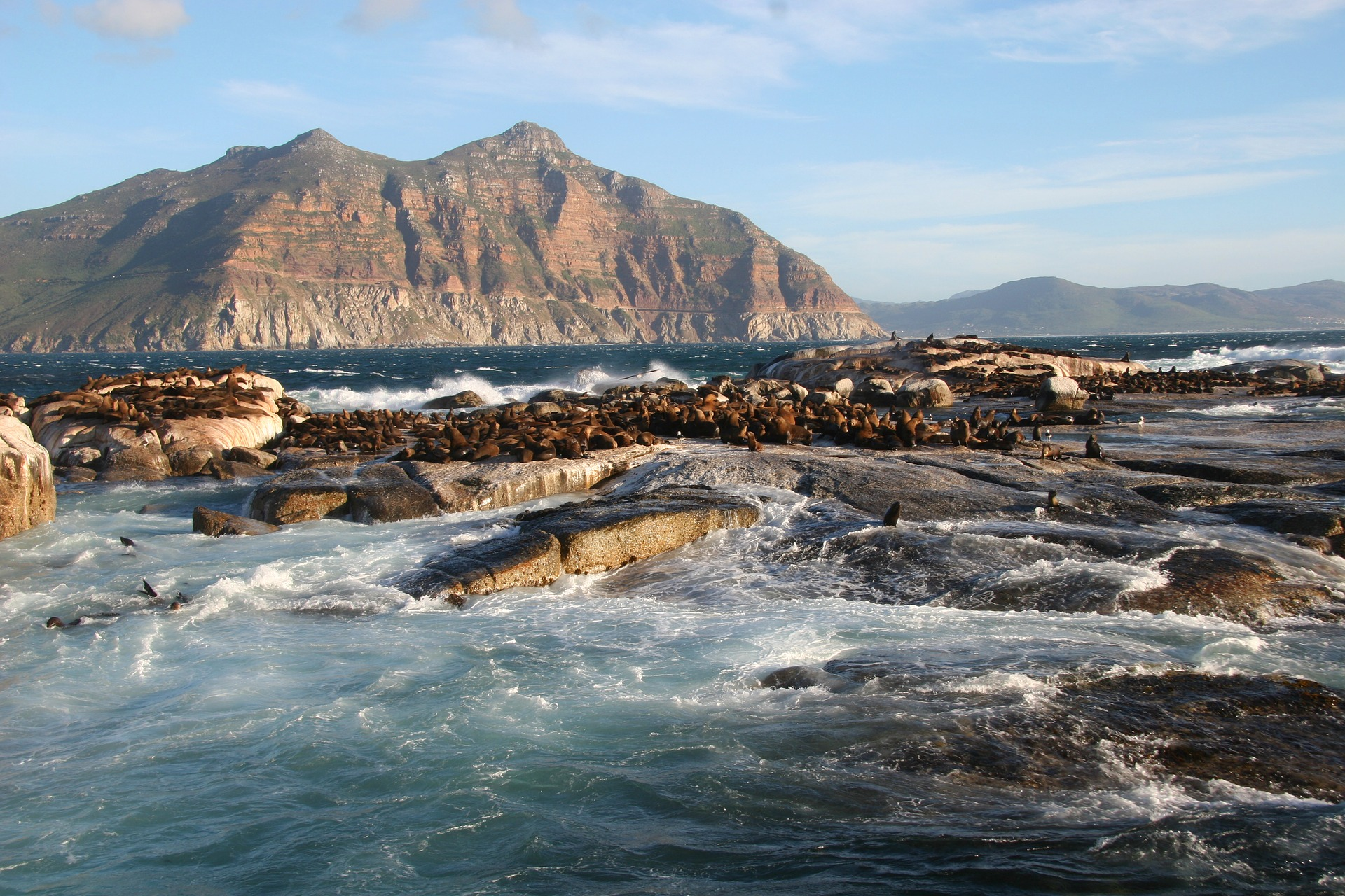 Duiker Island, Hout Bay, South Africa