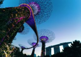 Gardens by the Bay and Marina Bay Sands, Singapore