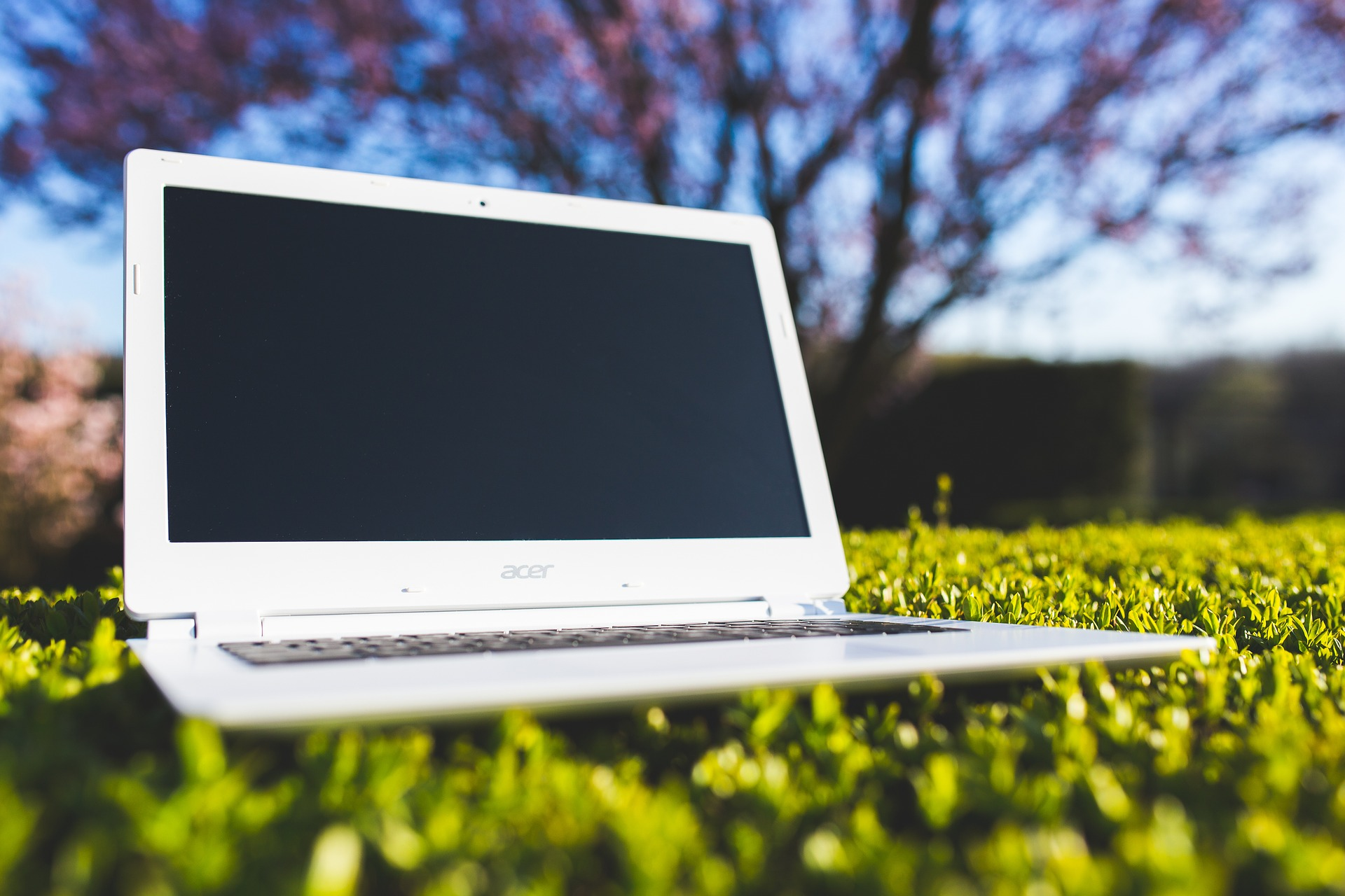 Laptop sitting on grass