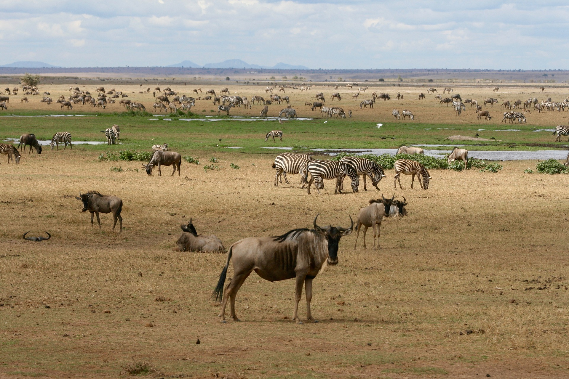 Top 10 Tourist-Friendly Places To Visit in Africa | Widest