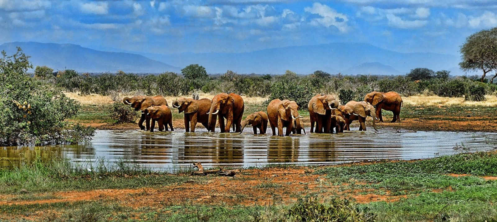 Top 10 Tourist-Friendly Places To Visit in Africa