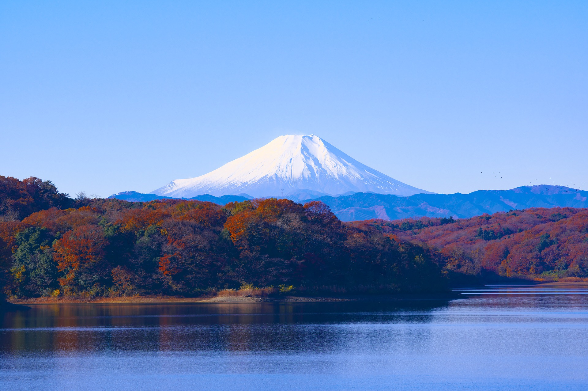 Sayama Lake, Japan, with Mount Fuji in background