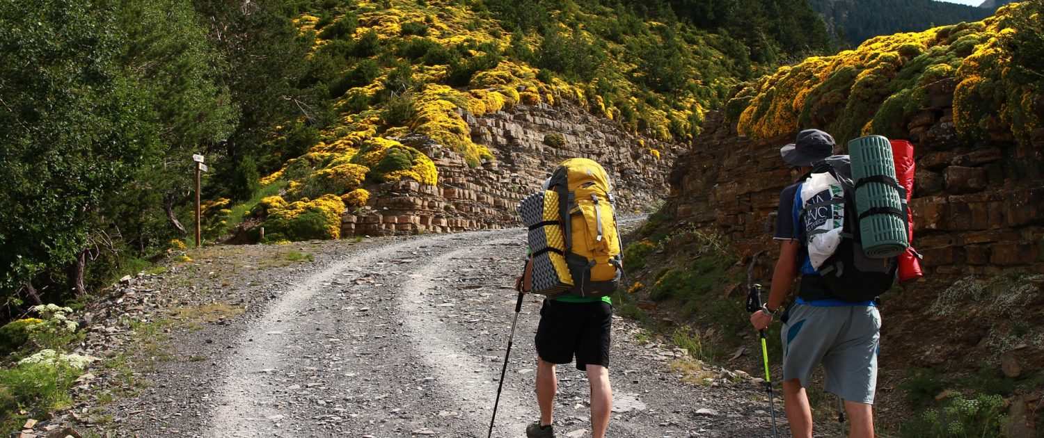 Travellers wearing backpack going hiking