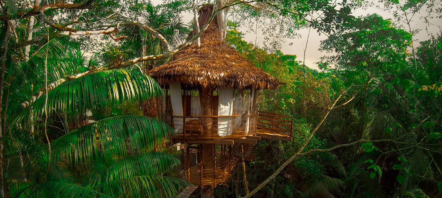Treehouse Lodge Resort-Iquitos, Peru