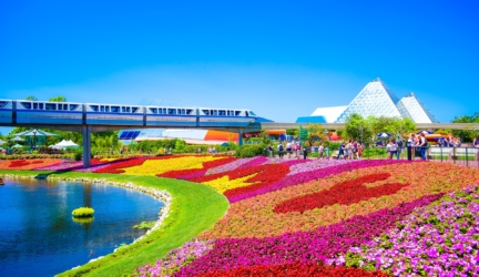 Top 15 Attractions And Things To Do In  Orlando, Florida