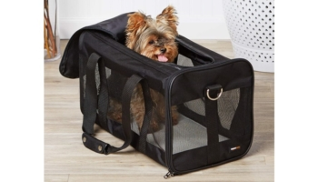 Large Soft-Sided Mesh Pet Transport Carrier Bag