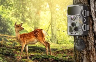 12 Best Selling Wildlife Trail Cameras